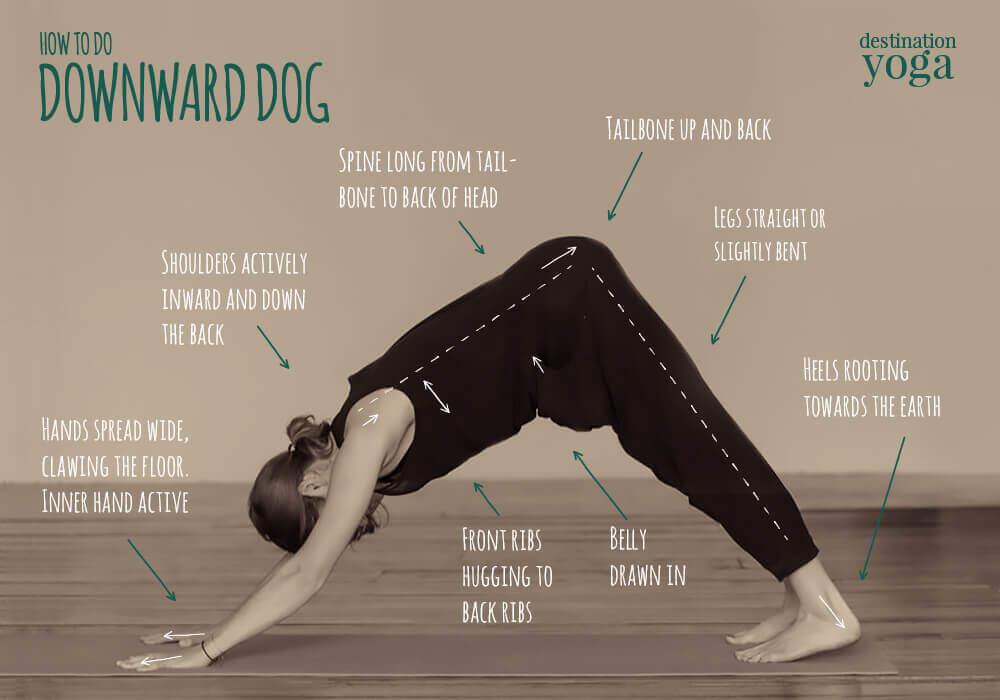 Downward Dog Yoga with Instruction